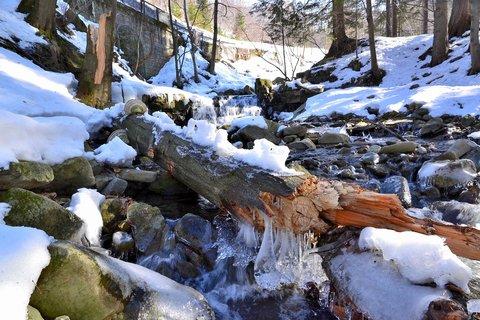 FOTKA - Končící zima na Satině