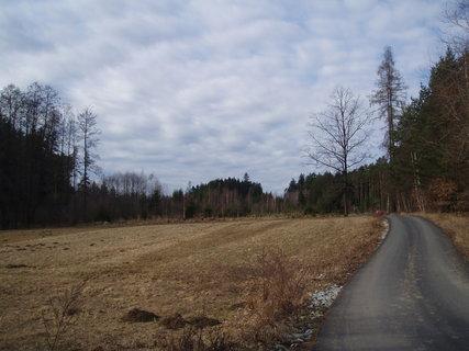 FOTKA - u lesa - březen 2012