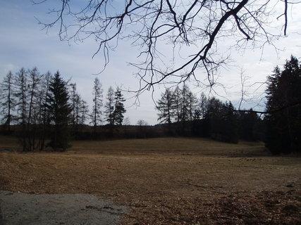 FOTKA - u lesa - březen 2012 .