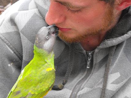 FOTKA - políbení