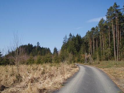 FOTKA - les - březen 2012 .
