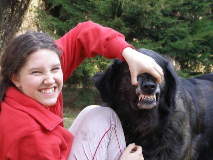 FOTKA - zubajdy