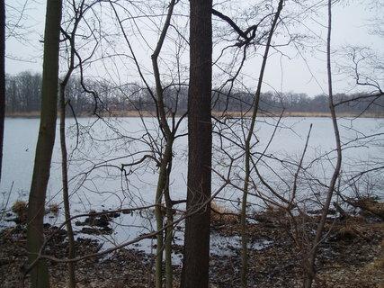 FOTKA - u rybníka    23.3.2012 .