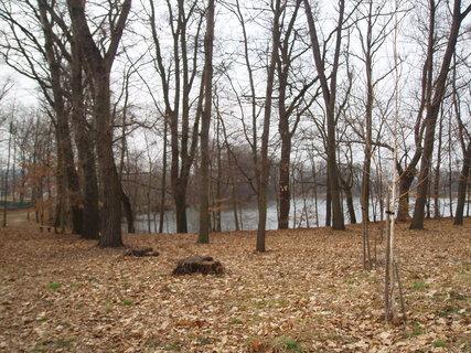 FOTKA - v parku u rybníka .