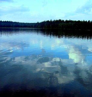 FOTKA - Hladina rybníka..
