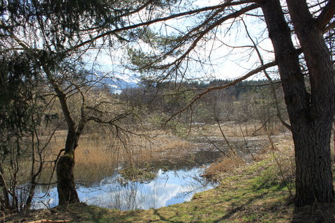 FOTKA - Saalfelden a Ritzensee 15
