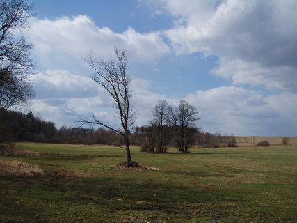 FOTKA - z procházky   1.4.2012 .