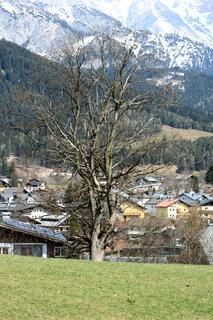 FOTKA - Saalfelden a Ritzensee 30