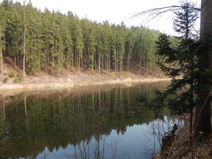 FOTKA - lesní rybníček na Dobříšsku