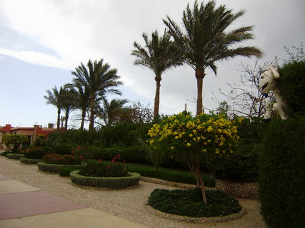 FOTKA - Kr�sn� upraven� zahrada