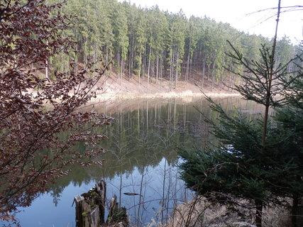FOTKA - na Dobříšsku, rybník v lesích
