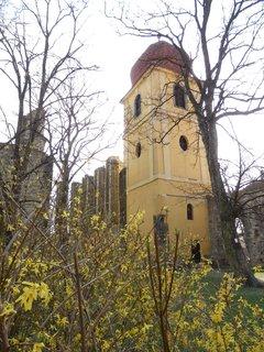 FOTKA - Panenský Týnec , jarní výlet
