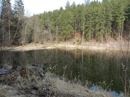 FOTKA - v lesích na dobříšsku (článek o dalším výletu do Brd čeká na schválení)