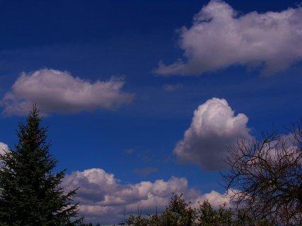 FOTKA - polední procházka 21.4.2012, krásný den..