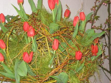 FOTKA - Věnec z tulipánů a vrbového proutí