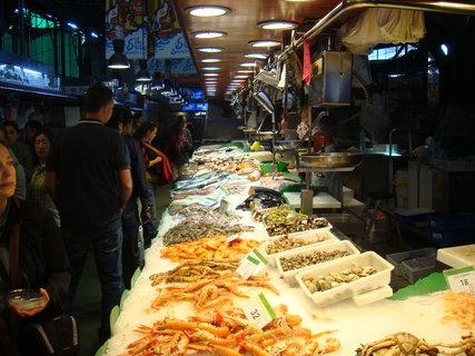 FOTKA - Tržnice - dary moře