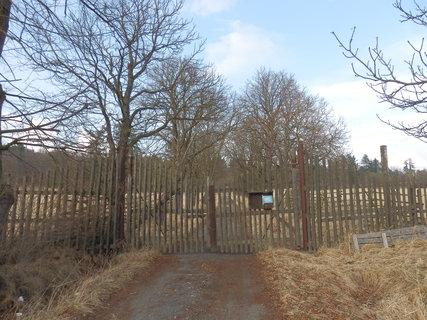 FOTKA - Obora Aglaja (jak se Aglaja dostala do brdských lesů dovíte se v článku 13.5.)