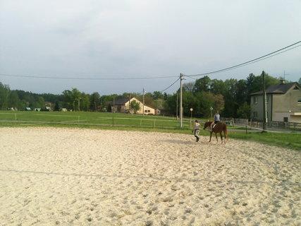 FOTKA - U koní.