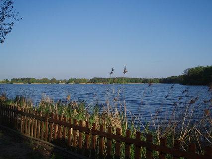 FOTKA - rybník na jaře