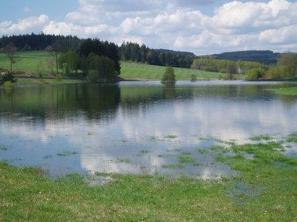 FOTKA - rybník na jaře .
