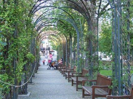 FOTKA - Park