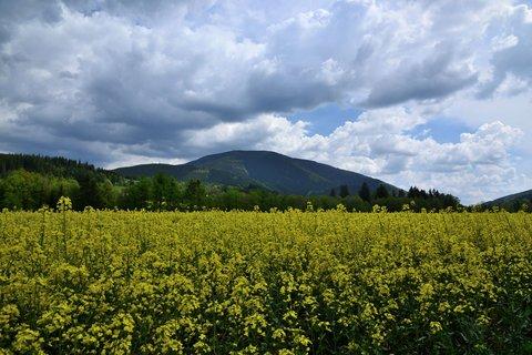 FOTKA - Moje rodné hory