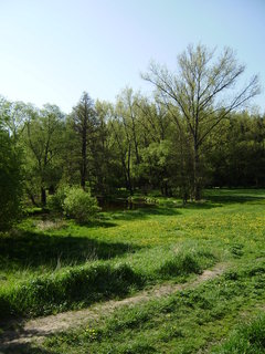 FOTKA - řeka a příroda hned u V. Meziříčí