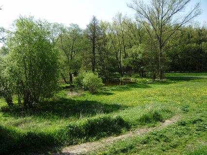 FOTKA - řeka a příroda hned u V. Meziříčí 2