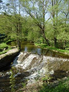 FOTKA - řeka a příroda hned u V. Meziříčí 3