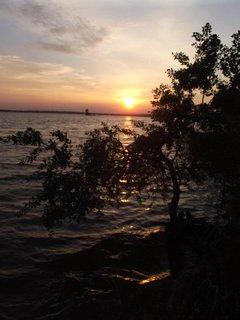 FOTKA - západ slnka na Dunaji 3