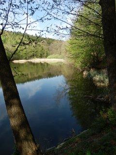 FOTKA - cestou z Lesné do Čížova, NP Podyjí