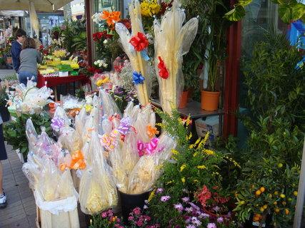 FOTKA - Květinářství
