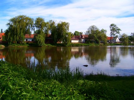 FOTKA - květen - Šeberovský rybník
