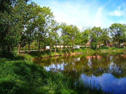 FOTKA - květen - Šeberovský rybník..
