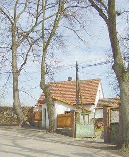 FOTKA - procházka mojí vesničkou, kde bydlím-12