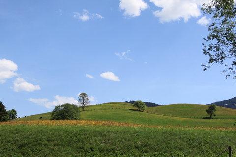 FOTKA - Z dnešní, konečně jarní procházky k Ritzensee 5