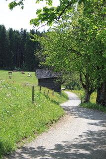 FOTKA - Z dnešní, konečně jarní procházky k Ritzensee 7