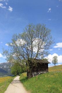 FOTKA - Z dnešní, konečně jarní procházky k Ritzensee 9