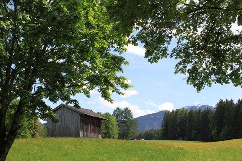 FOTKA - Z dnešní, konečně jarní procházky k Ritzensee 12