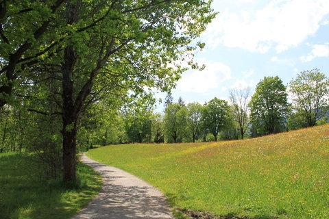 FOTKA - Z dnešní, konečně jarní procházky k Ritzensee 13