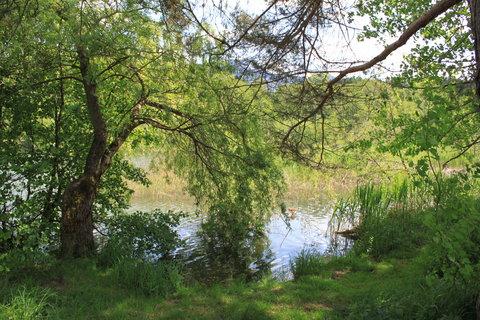FOTKA - Z dnešní, konečně jarní procházky k Ritzensee 14