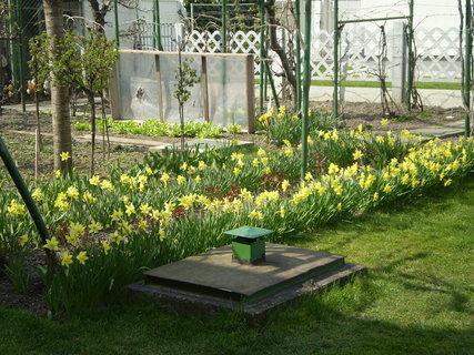 FOTKA - záhrada1