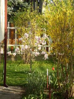 FOTKA - záhrada10