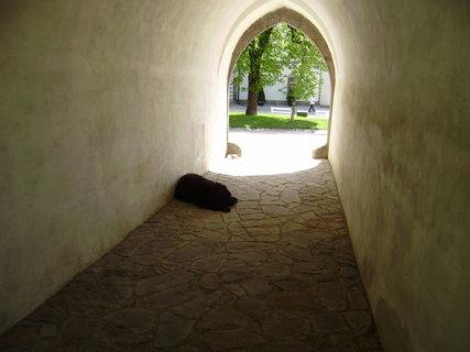 FOTKA - odpočinek na nádvoří