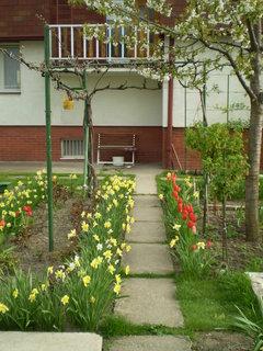FOTKA - záhrada13
