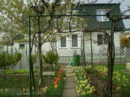 FOTKA - záhrada14