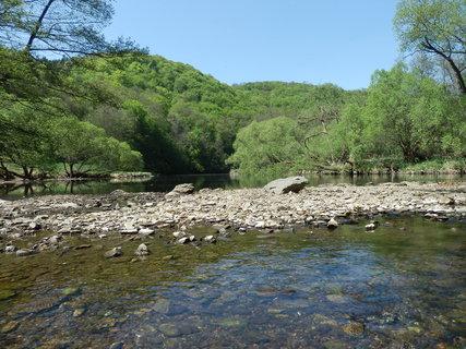 FOTKA - řeka Dyje, národní park Podyjí
