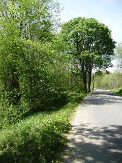 FOTKA - Silnice od Meziříčí :-) 2