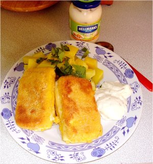FOTKA - včera oběd, smažený sýr