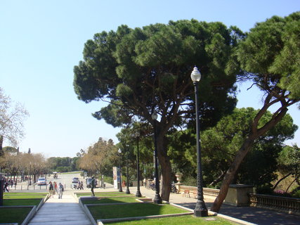 FOTKA - krásný park